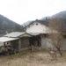 【本山町】集落の上にたたずむ日当たりの良い家(M04)